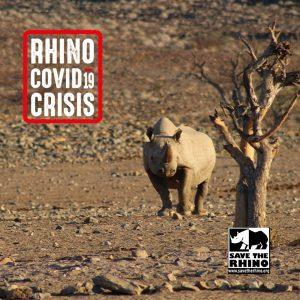 Rhino Covid-19 Crisis