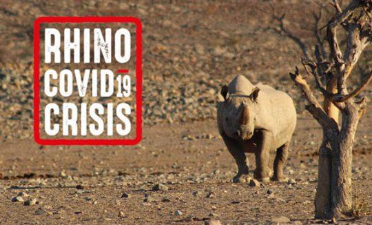 Rhino Covid-19 Crisis appeal